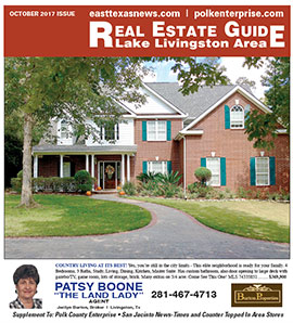 Real Estate Guide thumb
